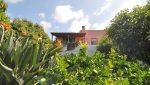 casa-el-jardin-ferienhaus-la-palma-reise-249