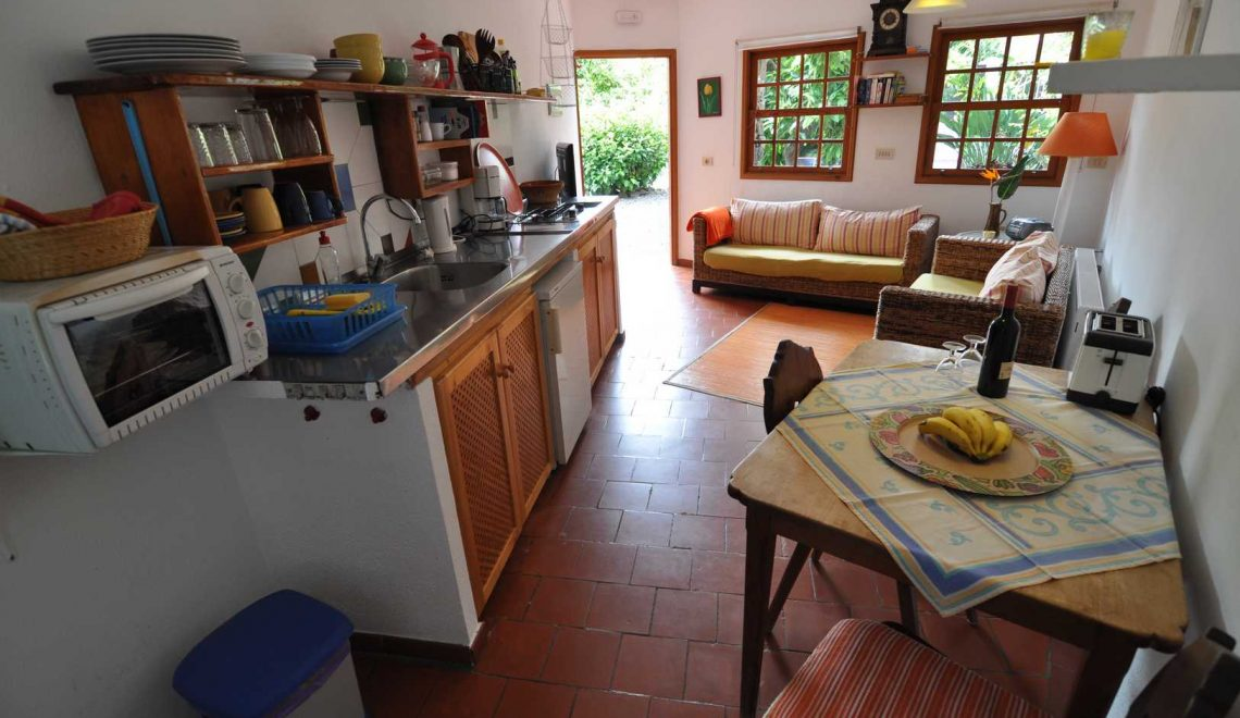 avocadofinca-nebenhaus-casita-ferienhaus-la-palma-reise-111