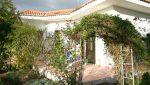 casa-alegria-ferienhaus-la-palma-reise-012