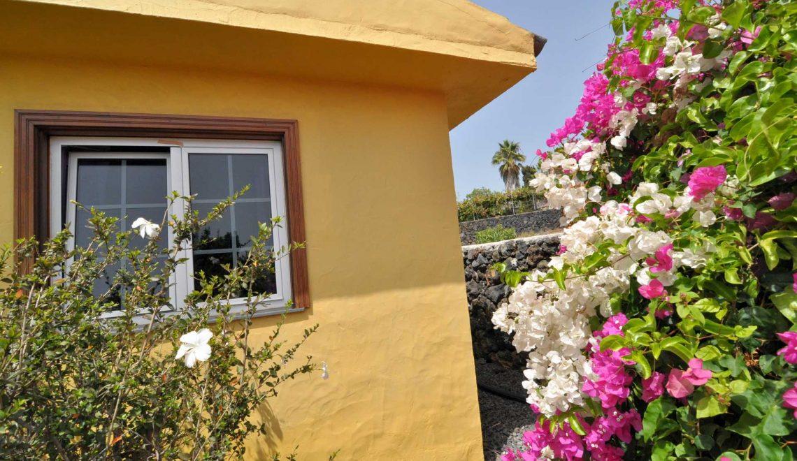 casa-manuela-roja-ferienhaus-la-palma-reise-215
