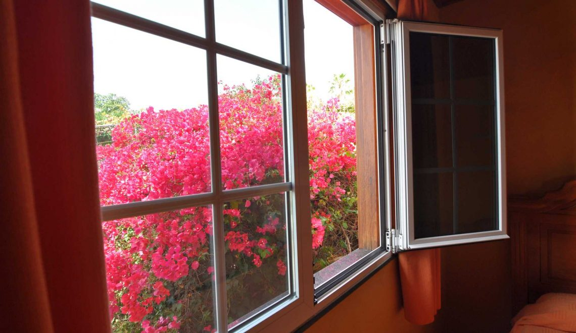 casa-manuela-roja-ferienhaus-la-palma-reise-221