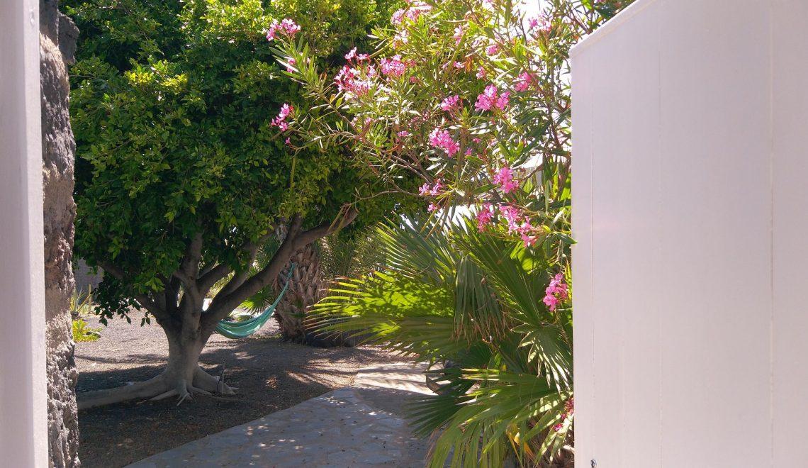casa-oceano-ferienhaus-la-palma-reise-017